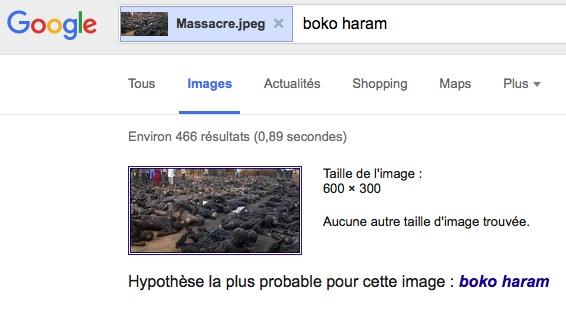 GoogleImages5
