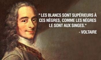 Négrophobie chez Voltaire