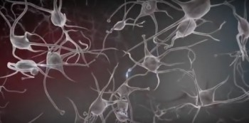 réseau neuronal des enfants